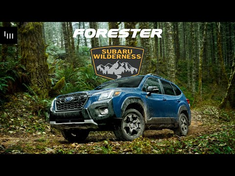 The 2022 Subaru Forester Wilderness Is Here And Ready To Off-Rroad