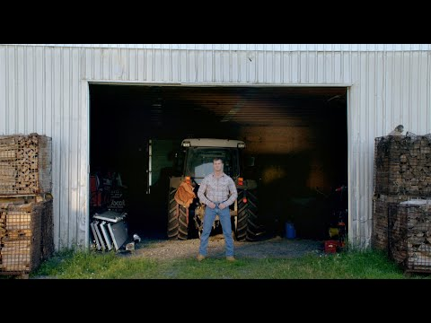 "Letterkenny - How to survive ""Beat your Dick December"""