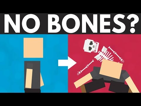 What If You Didn't Have Bones?