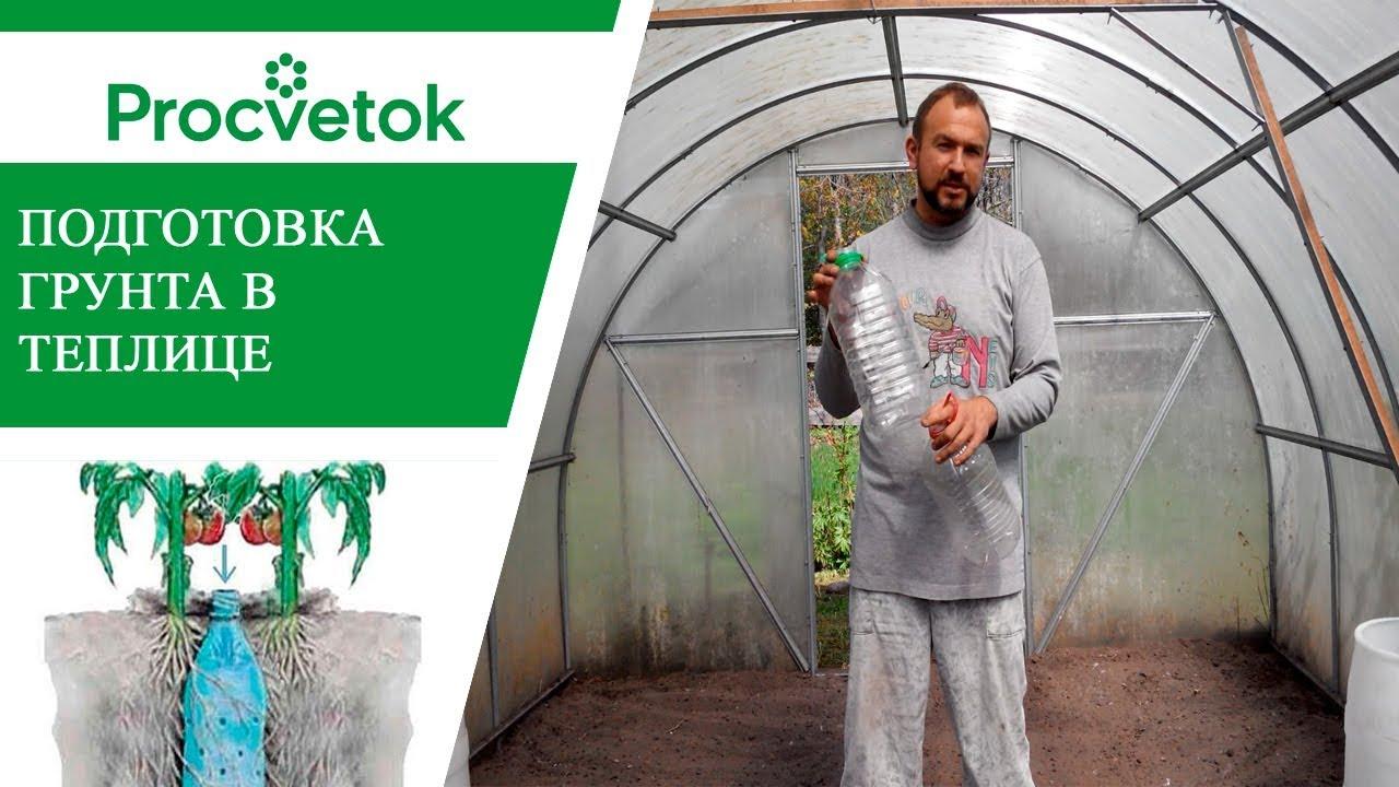 Подготовка теплицы к посадке томатов