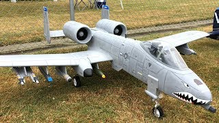 Epic FMS A-10 Thunderbolt II 70mm EDF Jet Flying - FMS A-10 Warthog Fun At Warbirds Over Whatcom