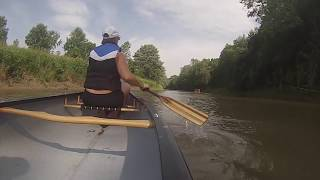 Rolling Down the River-Adult Day Paddle