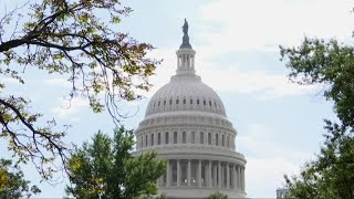 Montana's 2020 U.S. Senate race: Showdown or snoozer?