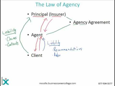 , title : 'Insurance Agency System
