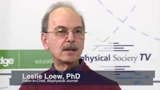 Interview with Biophysical Journal Editor-In-Chief, Leslie Loew