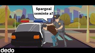 Probleme cu politia