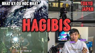 🔥Hot🔥 HAGIBIS - Hậu Quả Siêu Bão Gây Ra Tại Nhật Bản