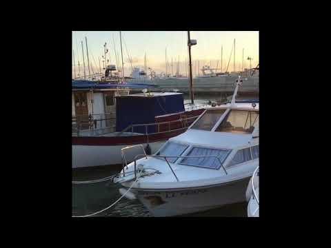 TheCruelDarya's Video 166232068576 _BAWnLEK1hU