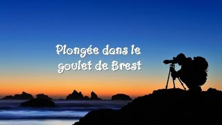 preview picture of video 'Plongée dans le Goulet de Brest'