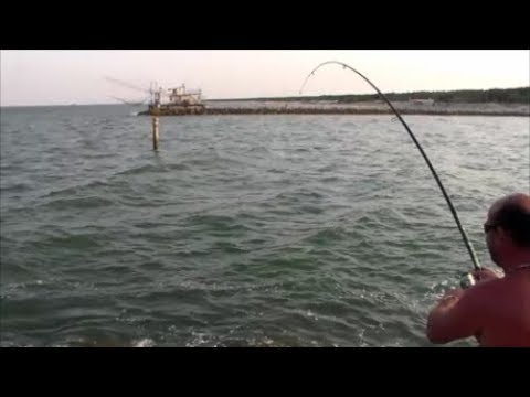 Grattugiare la pesca