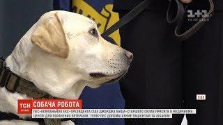 Собака Буша Саллі стала санітаром другого класу