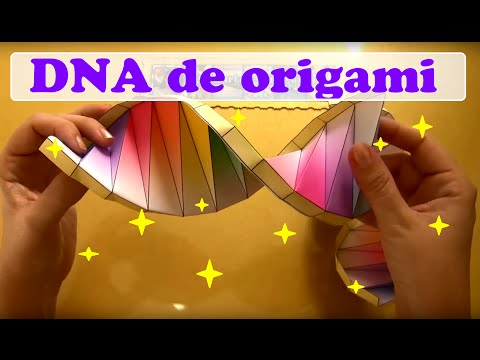 DNA (formato espiral)