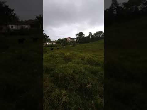 Fincas y Casas Campestres, Venta, La Cumbre - $190.000.000