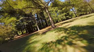 FORCED FLOW - FPV FREESTYLE