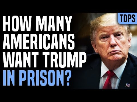 DAMN: Majority of Early Voters Want Trump IMPRISONED