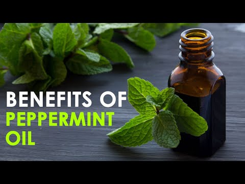 Uses and Benefits of Peppermint Oil | Healthfolks.com