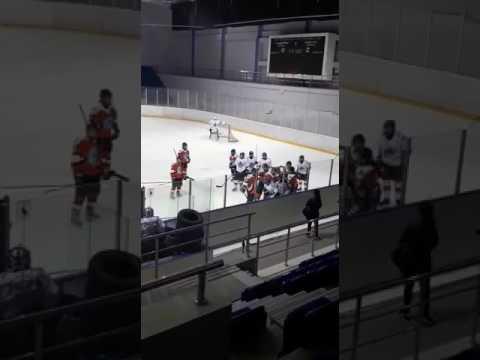 Массовая драка в женском хоккее / Women's hockey fight
