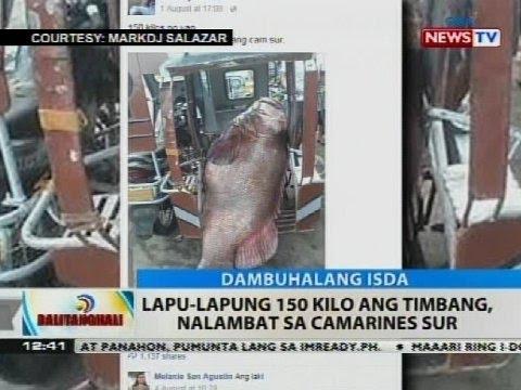Na makakatulong sa alisin dumukwang marks pagkatapos ng panganganak sa kanyang tiyan