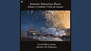 Sonate pour clavecin obligé et viole de gambe in G Minor, BWV 1029: I. Vivace