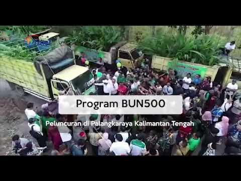 Menteri Pertanian melaunching program BUN 500 di prov Kalimantan Tengah