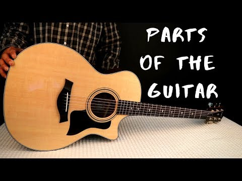 Parts Of The Guitar (And Their Functions)