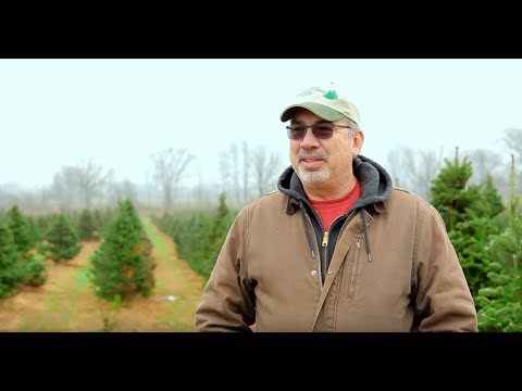, title : 'Life of a Christmas Tree Farmer - Levi Visits a U-Cut Farm | S1:E12 | MIgardener