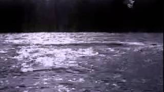 Michael W  Smith   Dance in the river