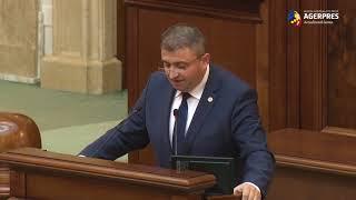 Senat/Andruşcă: Transelectrica şi Transgaz nu fac parte din FSDI