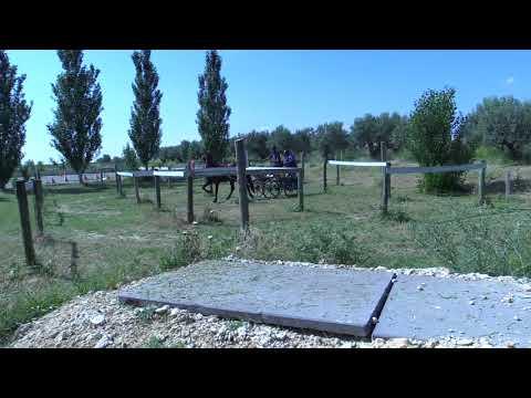 Campeonato Navarro de Enganches 240618 Video 3