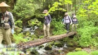 (動画)飛騨高山 風景
