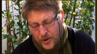 The Secret of Bay Leaves for Divination