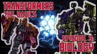 TRANSFORMERS: THE BASICS ep 3 - Biology