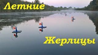 Ловля щук жерлицами на озере летом