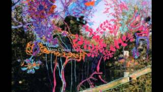 Animal Collective - Slippi (Ark Early Mix)