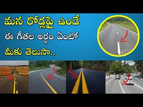 Why Do Roads Have White and Yellow Lines | Road Signals For Driving Test in Telugu