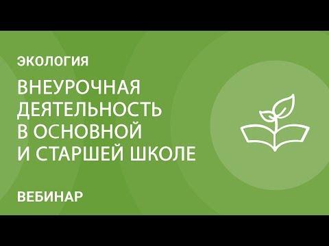 Внеурочная деятельность по экологии в основной и старшей школе
