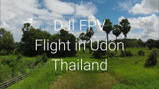 DJI fpv flight going through the Trees
