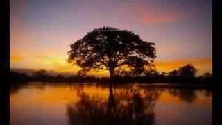 Video Kenny G - Forever In Love (instrumentales De Oro)