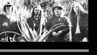 Captain Beefheart & His Magic Band - Diddy Wah Diddy