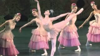 Dance of the Sugar Plum Fairies - Ukulele