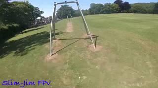 Summer fpv antics