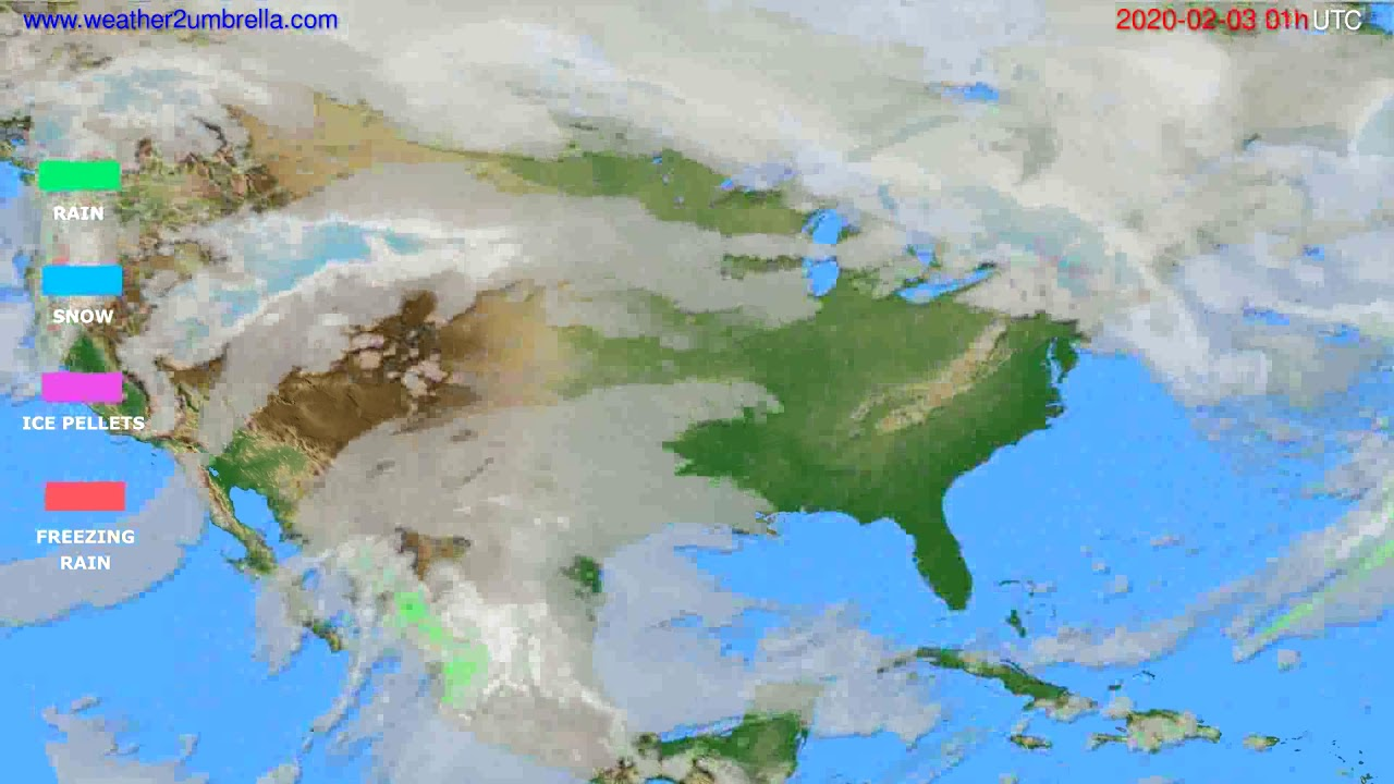Precipitation forecast USA & Canada // modelrun: 12h UTC 2020-02-01