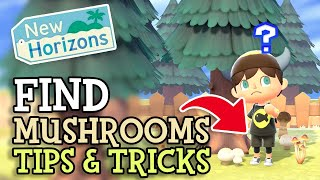 Animal Crossing New Horizons: How To Get MUSHROOMS (All Details with Tips & Tricks) Complete Guide!