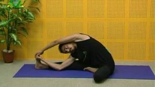Parivrtta Janu Sirsasana (Spiralled Head to Knee Pose)