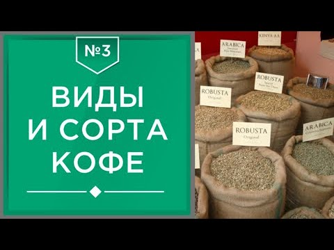 Виды и сорта кофе | Какие они бывают и сколько их существует ☕