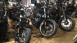 Harley Kameido
