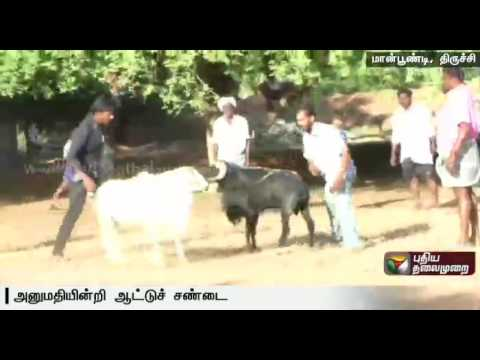 Man-held-for-goat-fight-in-Maanpoondi-Trichy