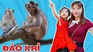 Trò Chơi Chuyến Phiêu Lưu Kỳ Bí Trên Đảo Khỉ - Những Chú Khỉ Tinh Nghịch - Bé Nhím TV