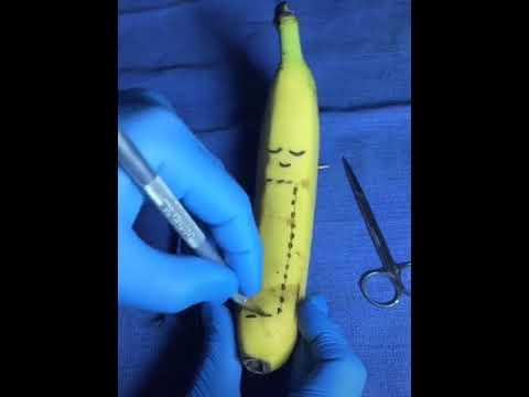 cirurgia em frutas