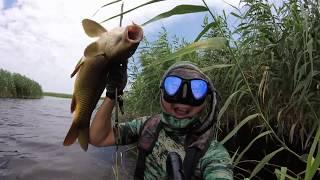 Икрянинский район астраханская область рыбалка